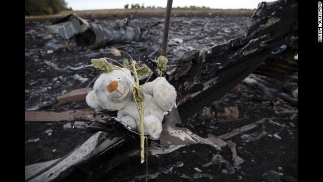 A flower and stuffed animal sit near the crash site of Malaysia Airlines Flight 17 in eastern Ukraine on Monday, July 21.