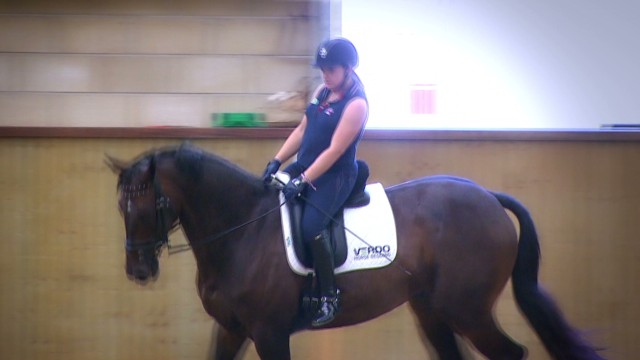 Britain: unbeatable in para-dressage