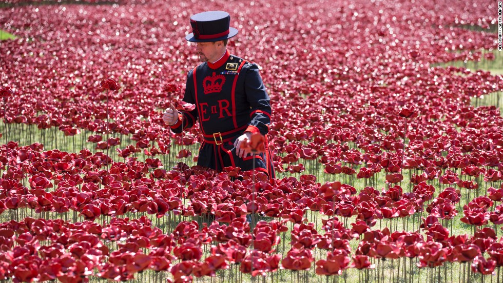 "The poppy display reflects the flower's long association with battlefields because they are known to thrive on earth disturbed by conflict. The symbolism was consolidated in the poem ""<a href=""http://www.greatwar.co.uk/poems/john-mccrae-in-flanders-fields.htm"" target=""_blank"">In Flanders Fields</a>"" by Canadian military surgeon and artillery commander John McCrae."
