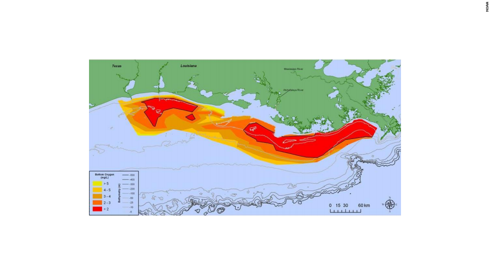 Gulf of Mexico 'dead zone' is the size of Connecticut