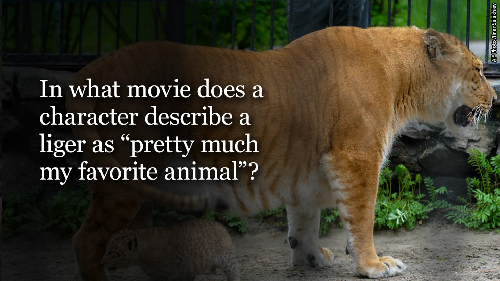 liger question