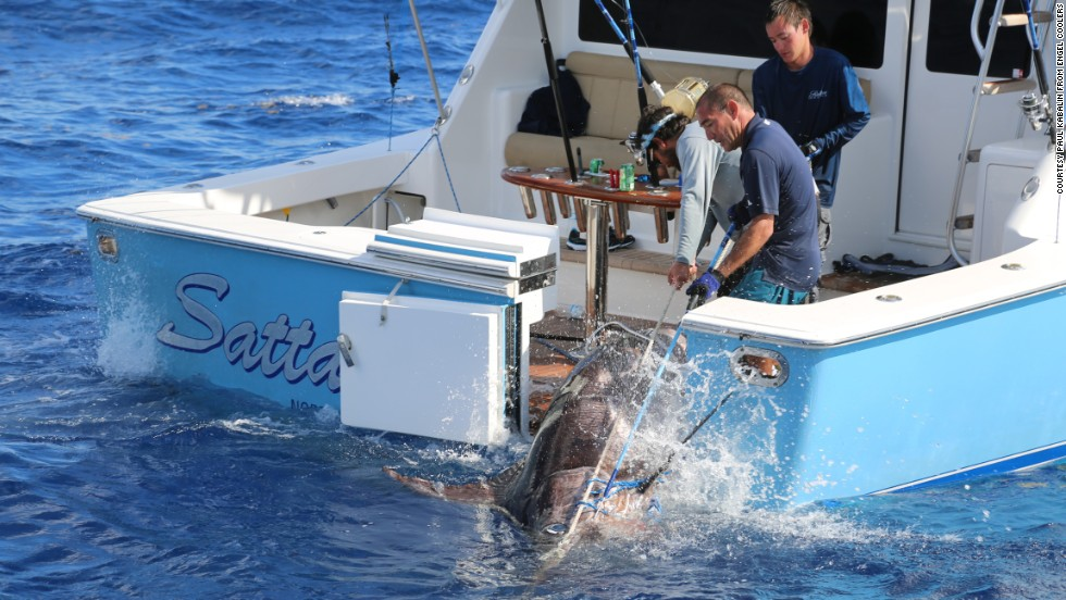 Fellow boater Paul Kabalin was returning from a trip to the Bahamas when he encountered the Sattar family about four hours into their battle with the swordfish.