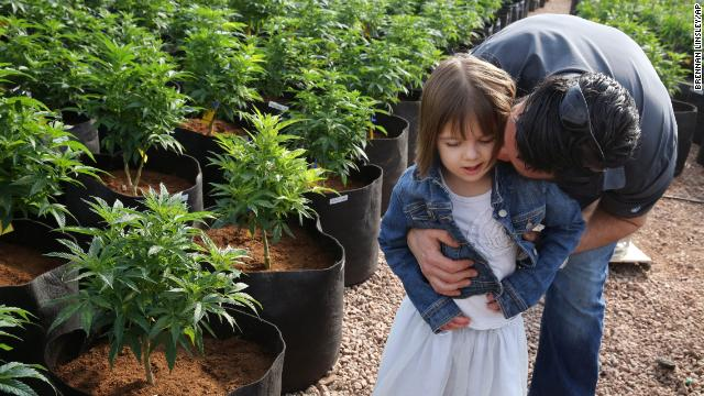 In this Feb. 7, 2014 photo, Matt Figi hugs and tickles his once severely-ill 7-year-old daughter Charlotte, as they wander around inside a greenhouse for a special strain of medical marijuana known as Charlotte's Web, which was named after the girl early in her treatment, in a remote spot in the mountains west of Colorado Springs, Colo. A few years ago, Charlotte's doctors were out of ideas to help her. Suffering from a rare disorder known as Dravet's syndrome, Charlotte had as many as 300 grand mal seizures a week, was confined to a wheelchair, went into repeated cardiac arrest and could barely speak. Now Charlotte is largely seizure-free, able to walk, talk and feed herself, with her parents attributing her dramatic improvement to this strain of medical cannabis. (AP Photo/)