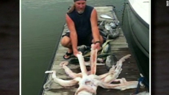 pk giant squid caught off matagorda coast_00005414.jpg