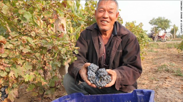 A worker at Grace Vineyard in China's Shanxi province.