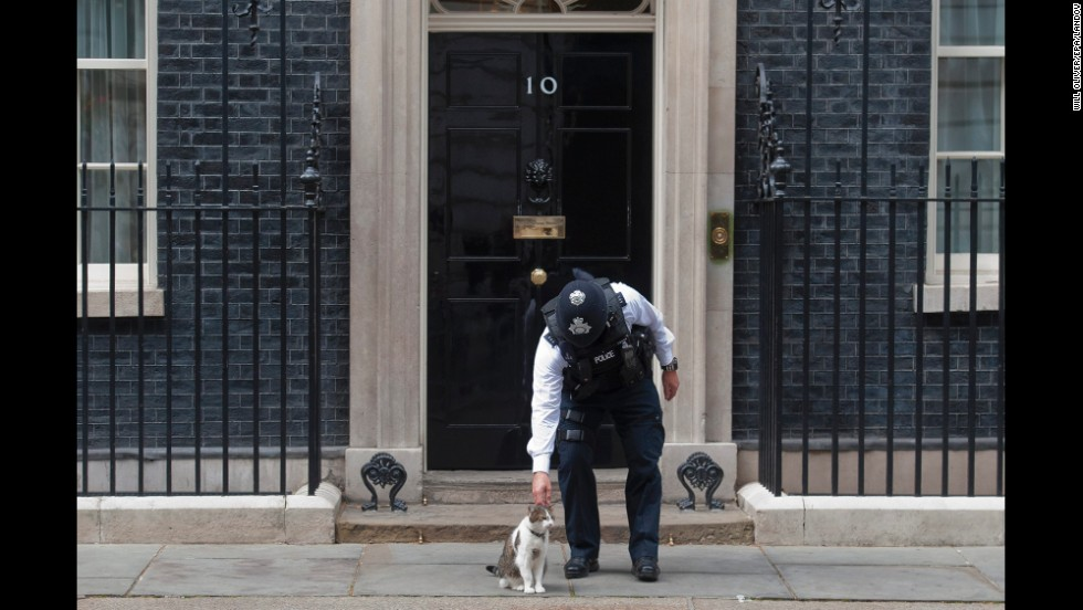 A police officer bends down to pet Larry, the cat of British Prime Minister David Cameron, outside 10 Downing Street in London on Thursday, September 25.