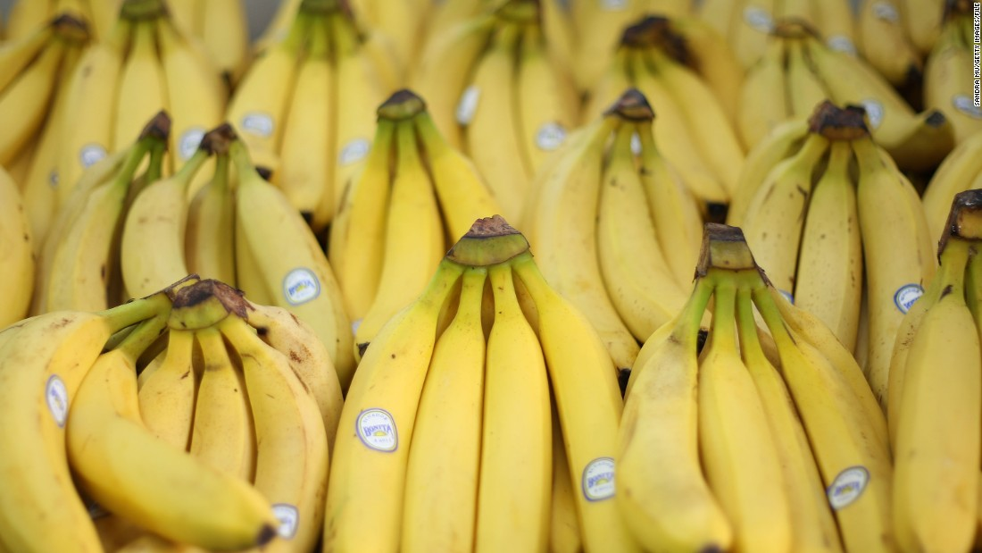 "The supermarket variety of the banana fruit, the Cavendish, is currently threatened by a disease know as ""Tropical Race 4."""