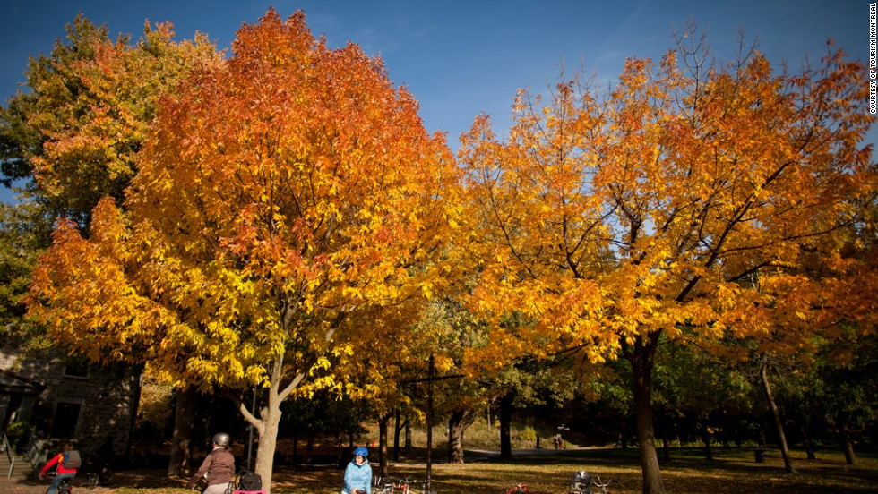 Montreal's Mont-Royal Park is crisscrossed with a network of running trails that offer beautiful views of changing fall leaves.