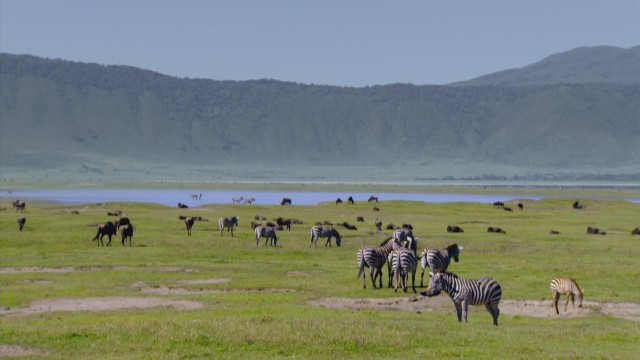 ab anthony bourdain parts unknown tanzania 2_00002910.jpg