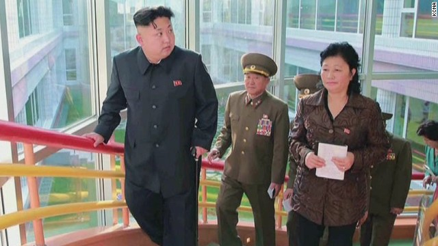 tsr dnt labott kim jong un cyst north korea_00010015.jpg