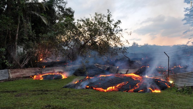 The June 27th lava flow burns vegetation as it approaches a property boundary above P hoa early on the morning of Tuesday, October 28, 2014. Lava pushed through a fence marking a property boundary above P hoa early on Tuesday morning. By dawn on Tuesday morning, lava had crossed into two privately owned properties above P hoa. Note the inflated flow behind the fence, which is chest-high. We are grateful to the owners of the property for allowing us access and permission to work on their land and post these photos.