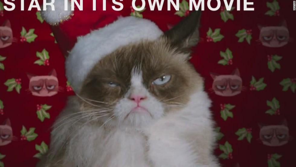Grumpy Cat starring in Christmas movie - CNN Video