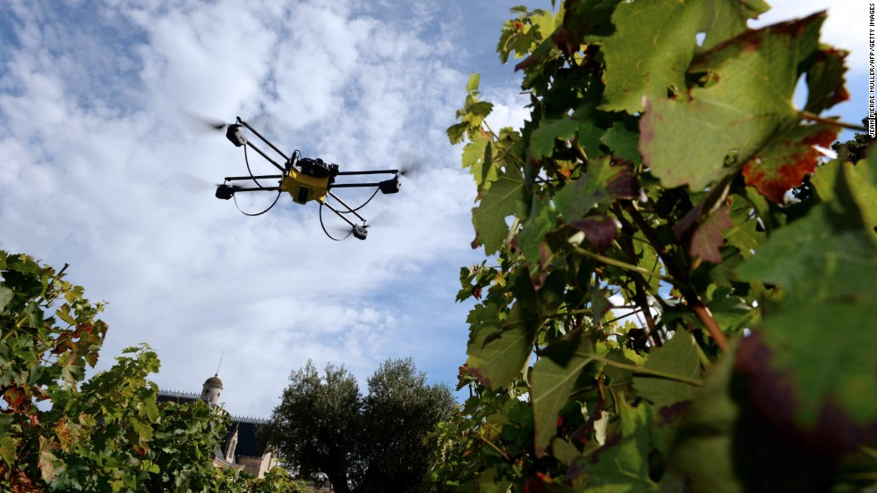 Drones in a vineyard? Wine not!? This one, pictured in September 2014 at the Pape Clement castle vineyards in Bordeaux, France, uses an infrared camera to assess the maturity of the grapes.
