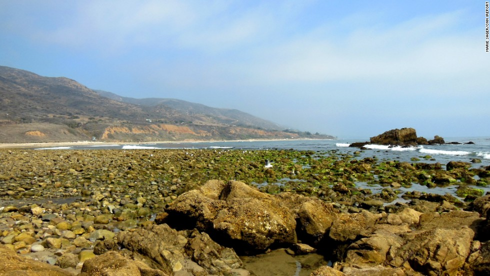 "Be sure to look down as you wander the coast of Malibu, California. Marie Sager says <a href=""http://ireport.cnn.com/docs/DOC-1038801"">each tidepool</a> holds ""a new discovery of little sea creatures."""