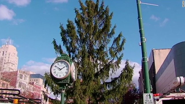 Town's 'Charlie Brown tree' spared