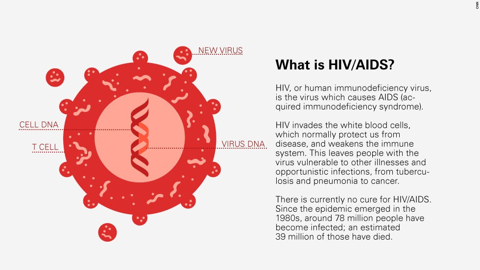 A new HIV vaccine shows positive results in human trails