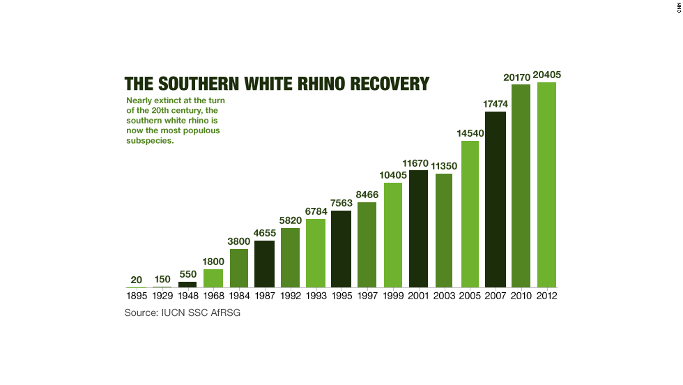 Southern White Rhino recovery