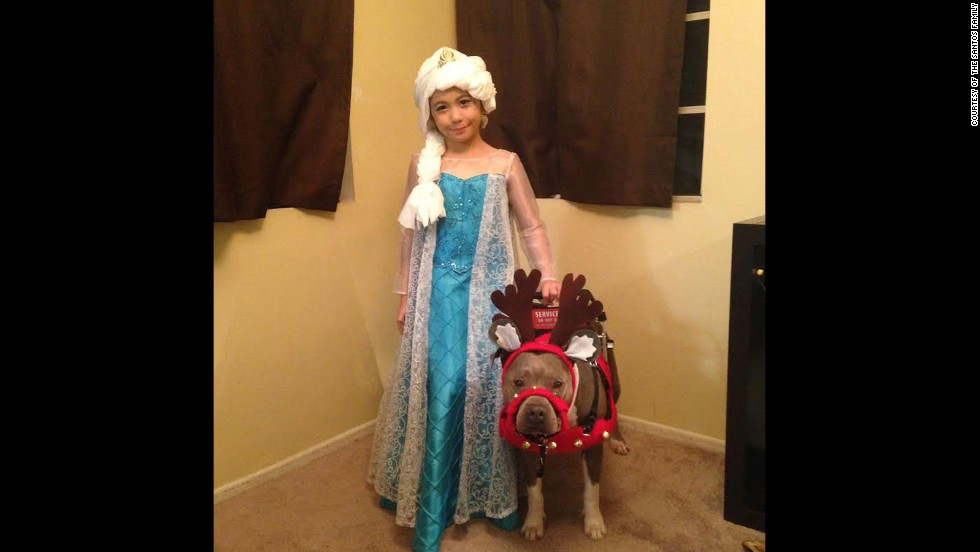 Mall Santa turns away autistic girl and her pit bull service dog