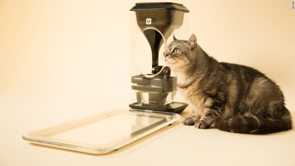 The bistro feeder gives cats nutrition according to their precise needs.