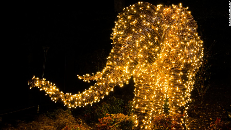 best places to see christmas lights from dc to las vegas cnn travel - Dc Christmas Lights