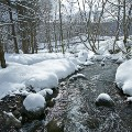 winter photo 8