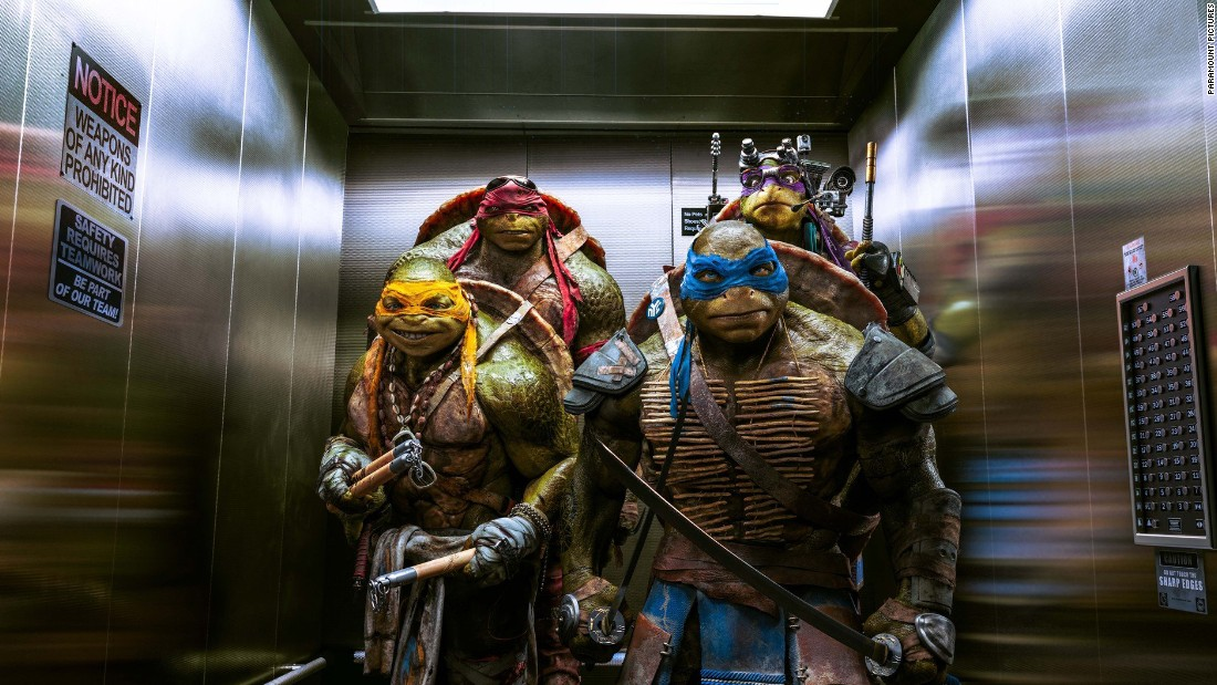 "The new ""Teenage Mutant Ninja Turtles,"" which was produced by Michael Bay, is up for worst picture, giving him two credits in the category."