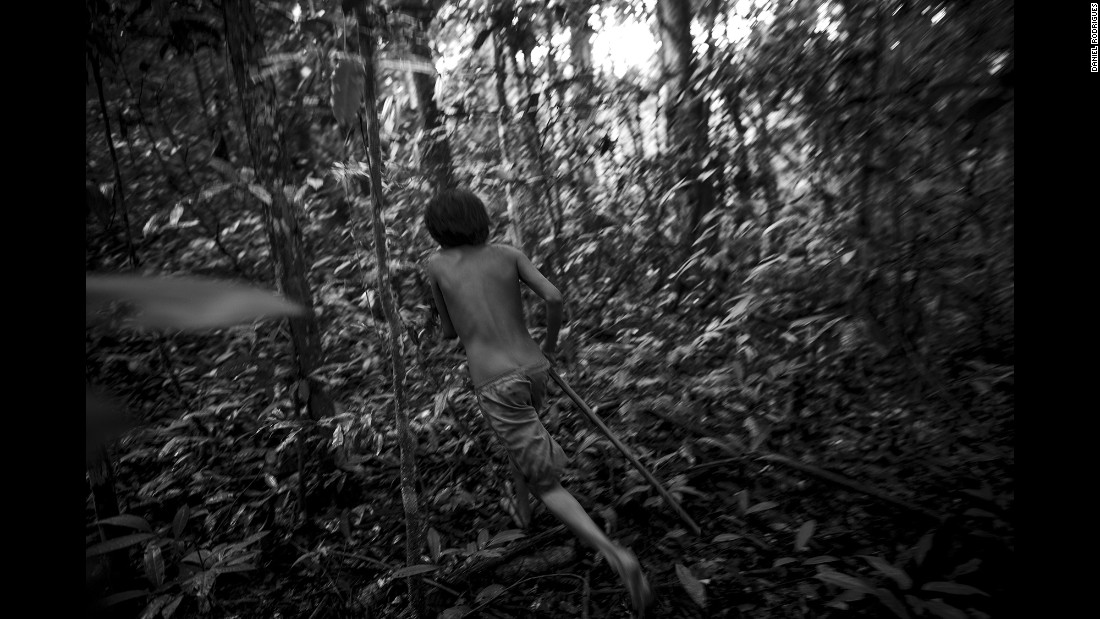 Arawata runs after seeing an animal in the jungle.