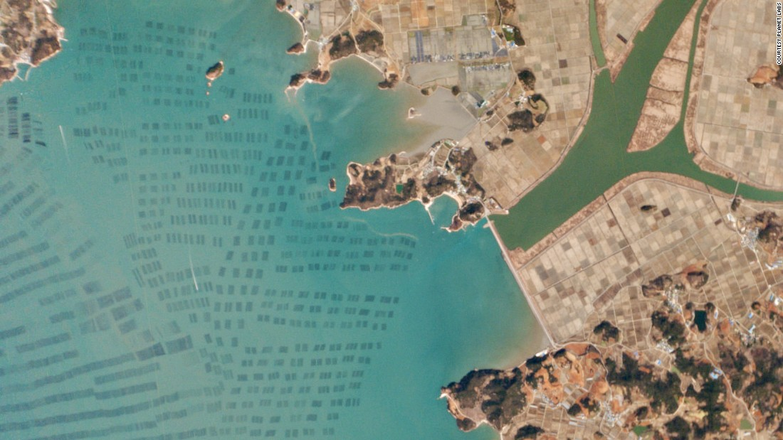 Aquaculture in the small town of Hanjia-Ri, South Korea.