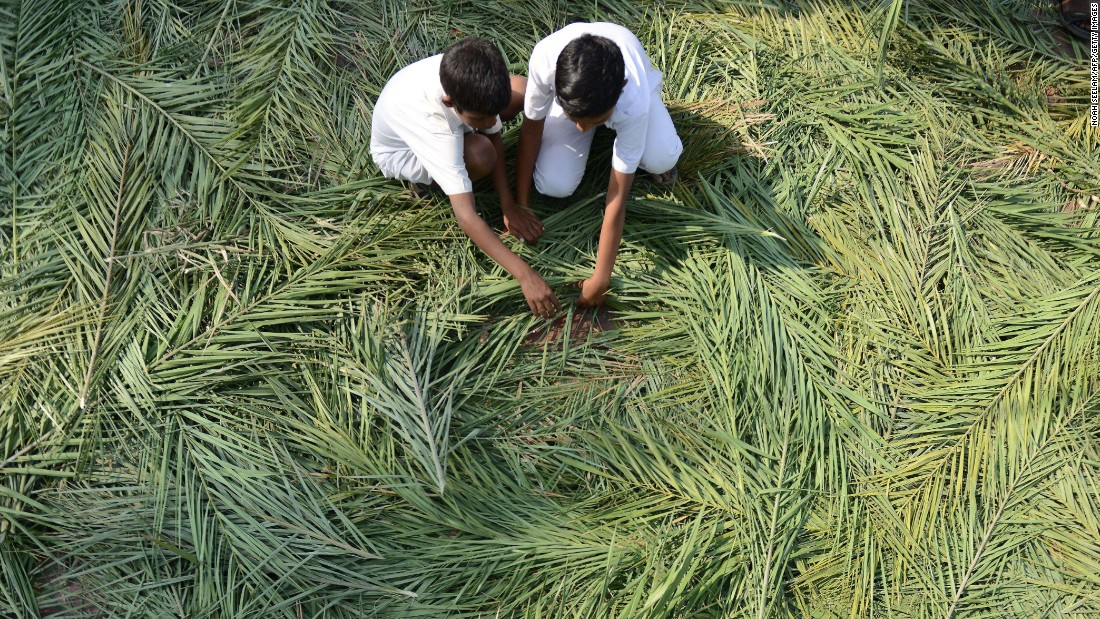 Christians collect palm fronds for a Palm Sunday service in Secunderabad, India, on March 29.