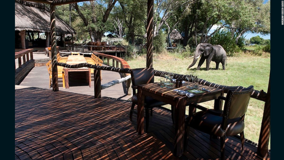 Mombo Lodge in Botswana prides itself on its eco credentials.