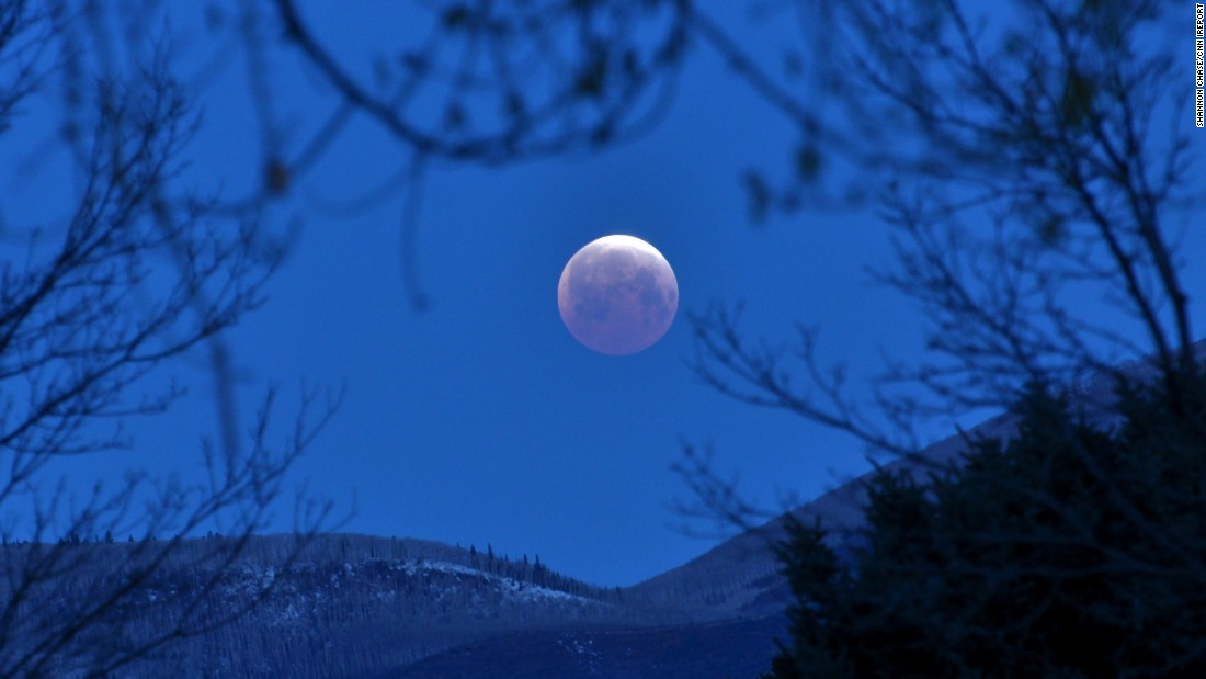 "<a href=""http://ireport.cnn.com/docs/DOC-1230771"">Shannon Chase</a> rose early on Saturday to photograph the total lunar eclipse from her home in Carbondale, Colorado."
