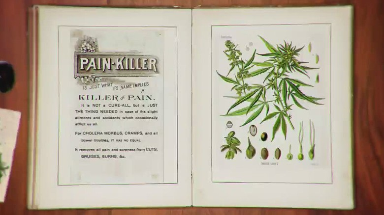 history medical marijuana orig nws_00003424
