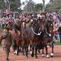 07 anzac day