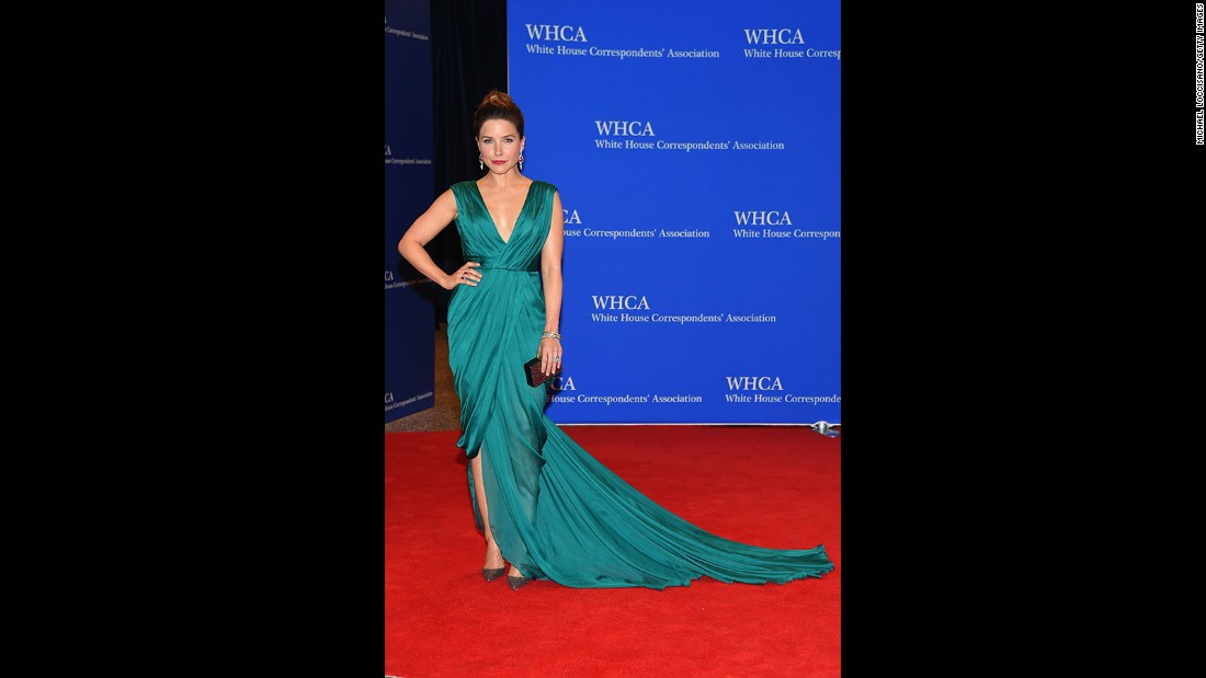 Sophia Bush attends the 101st Annual White House Correspondents' Association Dinner at the Washington Hilton on April 25, 2015 in Washington, D.C.