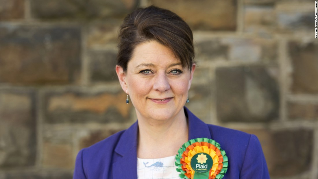 Leanne Wood is the leader of the Plaid Cymru Party, which is a political party in Wales that advocates for independence within the European Union.