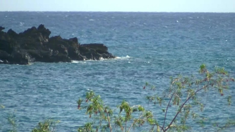 vosot shark attack maui hawaii_00001423