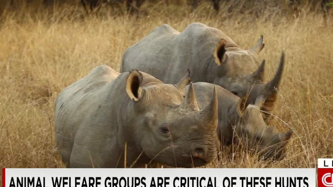 Conservation hunting: Boon to wildlife or unjustifiable sport?