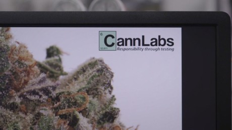 cannabis labs high profits_00001806.jpg