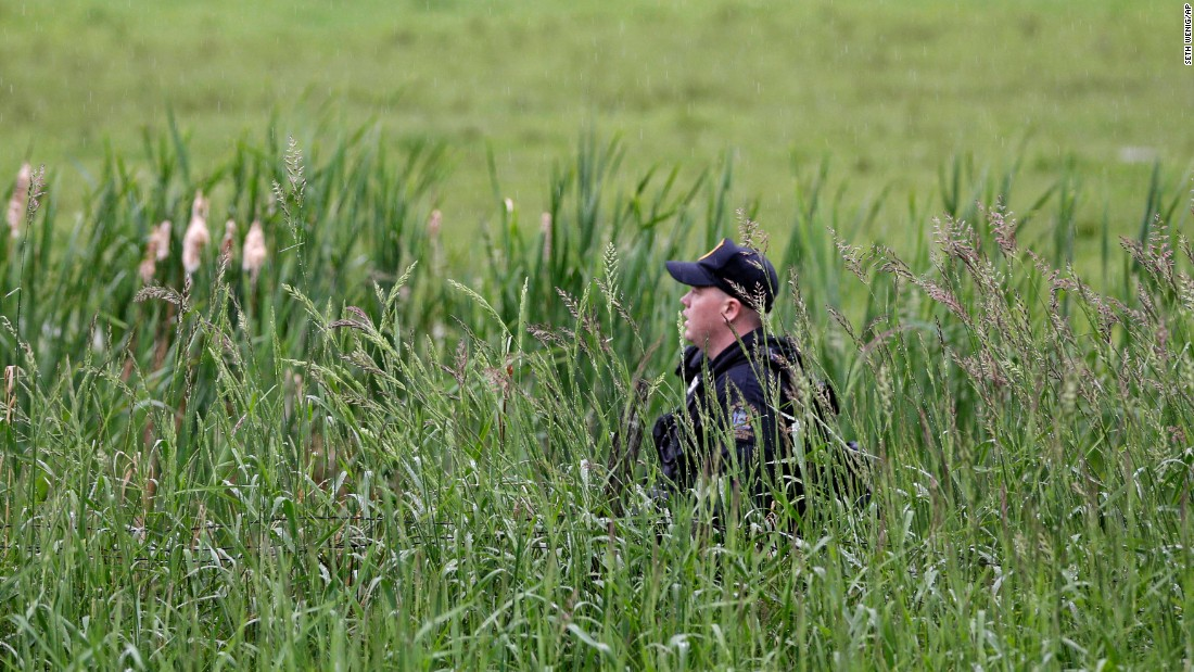 An officer walks through a swampy area near Essex on June 9.