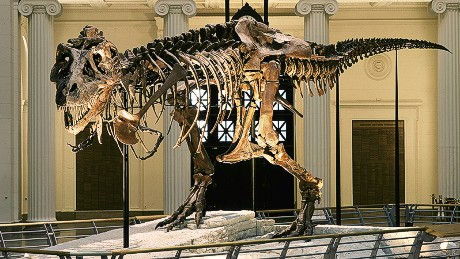 10 of the world's best dinosaur museums