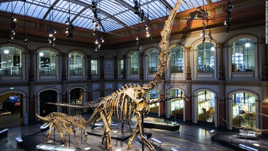 The Museum für Naturkunde is home to the world's tallest mounted dinosaur skeleton. The Brachiosaurus stands at 41 feet, 5 inches and is a Guinness World Record holder.