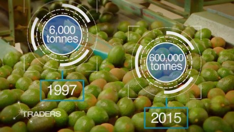 Mexico's great avocado boom