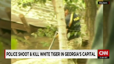 police shoot white tiger georgia newton pkg wrn_00011908