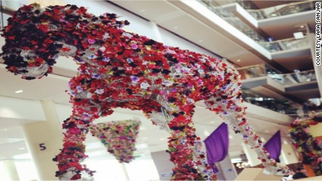 The horse at Ascot was decorated with Silk petals