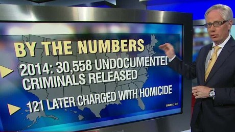 How much crime is committed by undocumented immigrants?