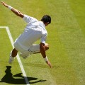 djokovic slips