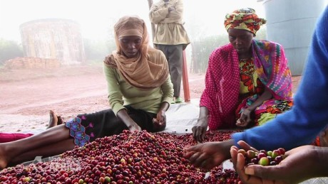 What's special about Rwandan coffee
