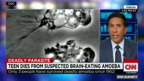 Brain eating amoeba_00043611