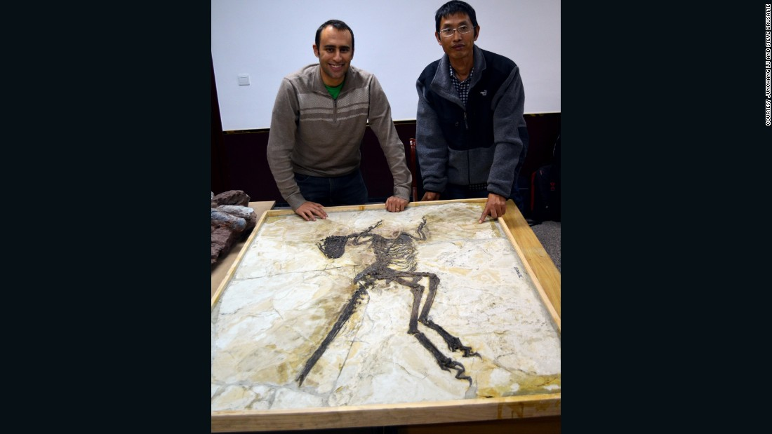 Steve Brusatte, left, and Lu Junchang post in front of the Zhenyuanlong skeleton