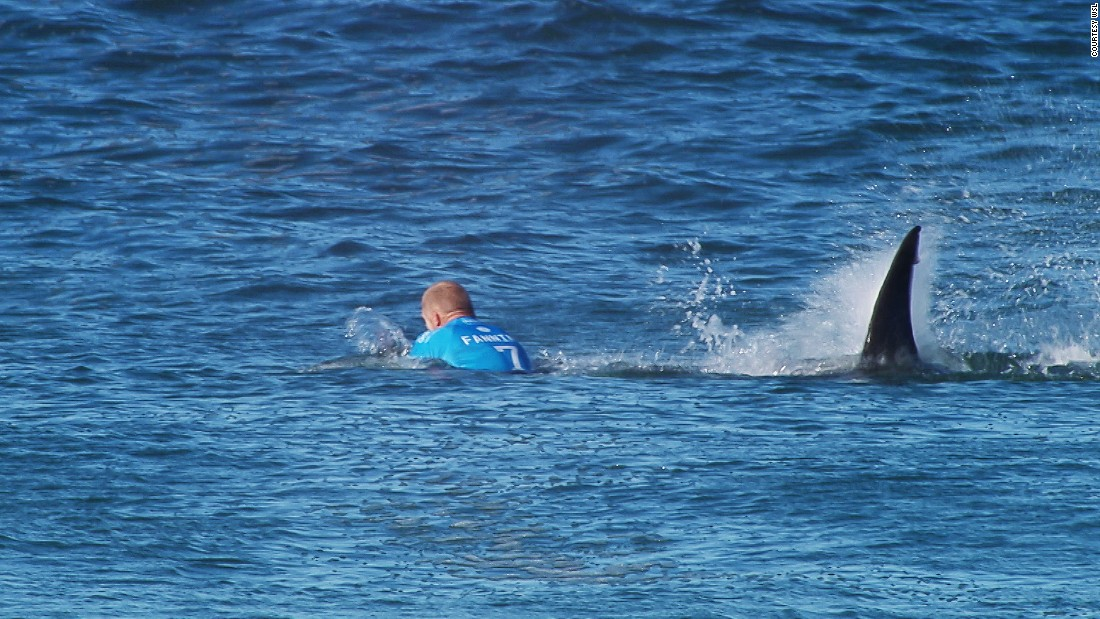 "A surfing competition in South Africa was canceled Sunday after championship surfer Mick Fanning escaped a shark attack in the opening minutes of the final heat. Fanning escaped with a severed leash on his surfboard. He told World Surf League TV that he ""punched"" the shark ""in the back"" to scare it away."